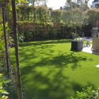 Lush Lawns and Landscapes