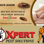 Pestrgone Pest Control Services Toronto profile image.