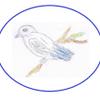 Bird's-Eye Re-view Business Services Ltd. profile image