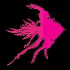 Pink Fish Associates Ltd