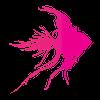 Pink Fish Associates Ltd profile image