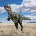 Wild Dinosaurs Entertainment