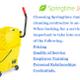 Springtime Janitorial logo
