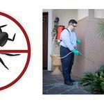 Universal Pest & Termite profile image.