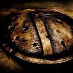 Spartan Investigations Inc. profile image.