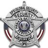 DPSI Global Security Inc profile image