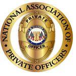 DPSI Global Security Inc profile image.