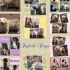 Stylish  Dogz profile image