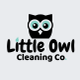 Little Owl Cleaning Co. logo