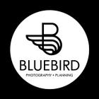 BLUEBIRD STUDIO logo