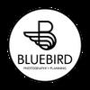 BLUEBIRD STUDIO profile image