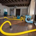 RapidDRY Kailua Carpet Cleaning & Water Damage profile image.