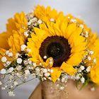 Rachael's Flowers