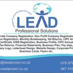 Lead Professional Solutions profile image.