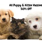 Thornhill Veterinary Clinic profile image.