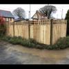 Sb fencing profile image