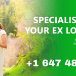 Top/Best Indian Astrologer in Canada profile image.