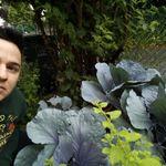 Artemis Home & Garden Ltd. profile image.