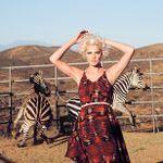 Amina Touray Photography profile image.