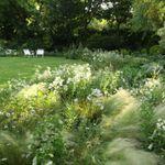 De la Harpe Landscapes (Pty) Ltd profile image.