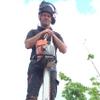 Fassfern Forestry Arborist & Tree Surgeon profile image