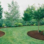 Cornerock Landscaping & Construction profile image.