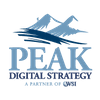 WSI Peak Digital Strategy, Inc. profile image