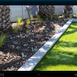 Secure Irrigation & Landscaping profile image.