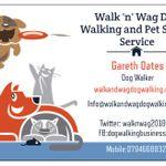 Walk and Wag Dog Walking and Pet Sitting Service profile image.