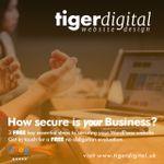Tiger Digital Web Design profile image.