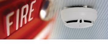 Safe & Sound Services profile image.