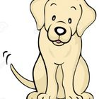 A Dogs-Tail,behaviour  training and pet store. logo