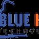 BLUEHORNTECH logo