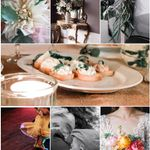 Eucalyptus Photography profile image.