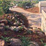 Crisp Landscapes profile image.