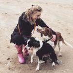 Pippin's Pet Care profile image.