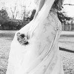 Sarah Elms Photography profile image.