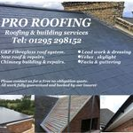 PRO Roofing services  profile image.