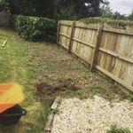 Garden-force (Tree surgery & Landscapes) profile image.