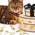 Flixels Limited profile image.
