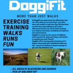 DoggiFit profile image.