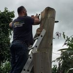 Nationwide tree and landscaping profile image.
