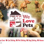 We Love Pets Solihull - Dog Walker, Pet Sitter & Home Boarder profile image.