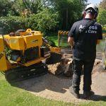 Access Tree Care profile image.