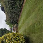 Neil's Complete Gardens & Landscapes profile image.