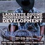 Lafayette Equine Acquirement and Development (L.E.A.D) profile image.