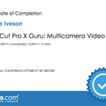 Reece Iveson Videography profile image.