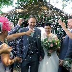 TC Wedding Videos profile image.