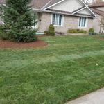 New Lawn Ottawa profile image.