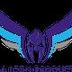 Aerial Icon Ltd logo